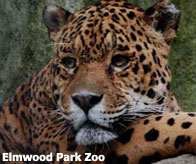 Elmwood Park Zoo, Norristown PA